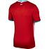 Nike FC Liverpool Trikot 2020/2021 Heim (2)