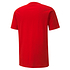 Puma T-Shirt GOAL 23 Rot (2)