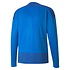 Puma Training Sweatshirt GOAL 23 Blau (2)