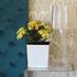 Siena Garden Pflanzkübel Brest eckig, 40x40x41,5 cm weiß (4)