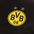 Puma Borussia Dortmund Matchshirt 2020/2021 Auswärts (4)