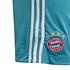 Adidas FC Bayern München Torwartshorts 2020/2021 Heim Kinder (4)