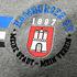 Hamburger SV T-Shirt CORVIN Grau (3)