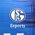 Umbro FC Schalke 04 e-Sports Trikot 2019/2020 Reflex (3)