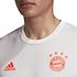 Adidas FC Bayern München Trikot 2020/2021 Auswärts (3)