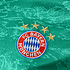 Adidas FC Bayern München Torwarttrikot 2019/2020 Heim Kinder (3)