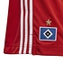 Adidas Hamburger SV Shorts 2020/2021 Heim Kinder (3)