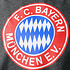 FC Bayern München T-Shirt Retro mit Logo Grau (3)