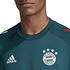 Adidas FC Bayern München Trainingsshirt 2020/2021 Grün (3)