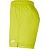 Nike Freizeit- und Badeshorts Grün (3)